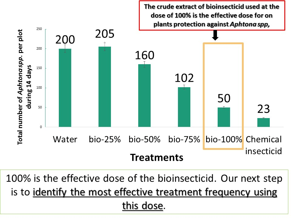 What is the effective dose of dillution for the efficacy of the