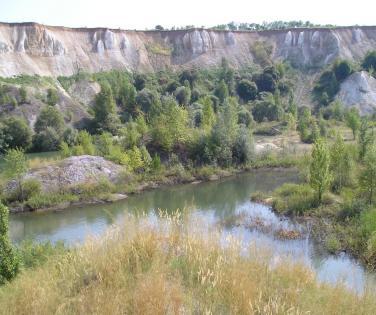 "quarry ""Bely Kolodets"" recultivation zone"