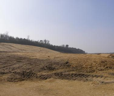 The area included in our project, current view on 23 March